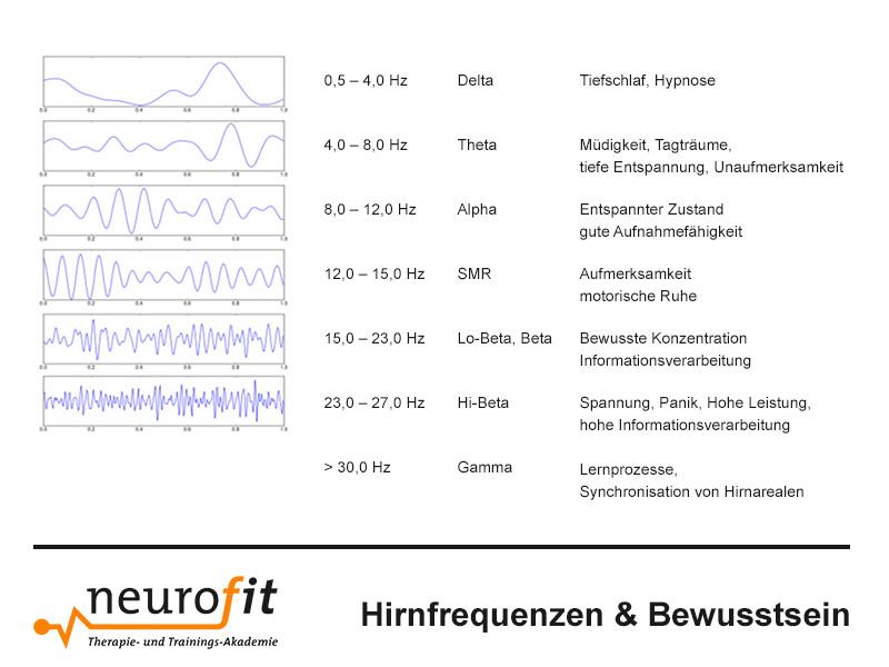Hirnfrequenzen & Bewusstsein mit Neurofeedback Mobil